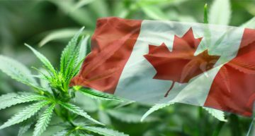 Trudeau Sets Canada's Cannabis Legalization to October 17
