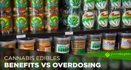 Can You Overdose Cannabis Edibles?