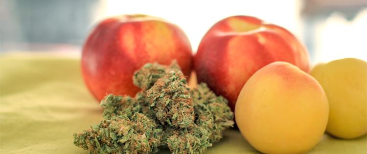 cannabis edibles overdose- marijuana cookies