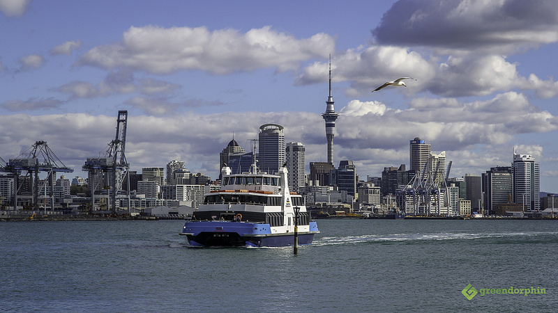 cannabis-in-new-zealand