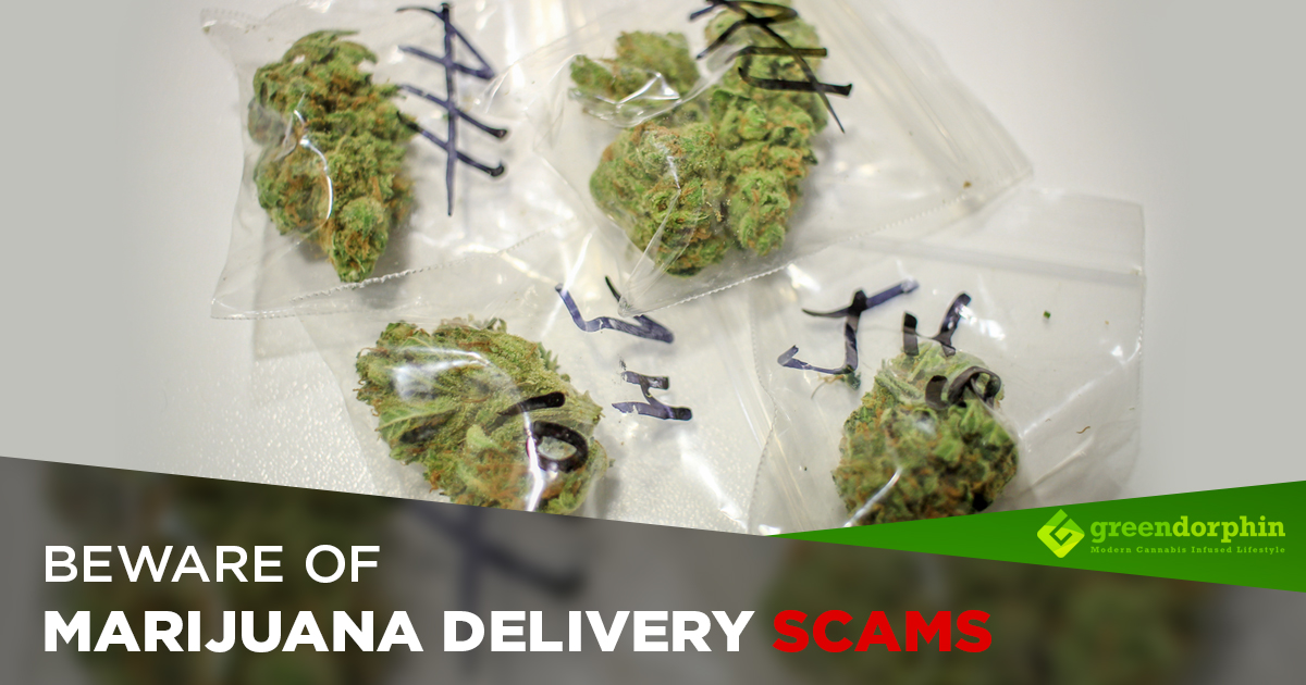 How to Know if a Marijuana Delivery Service is a Scam | Greendorphin com