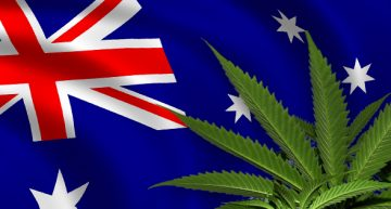 Australia To Legalize Medical Use In November