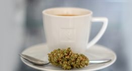 Have a Healthy Cup of Cannabis Coffee