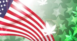 The State Of The Green State – An Overview Of Marijuana Reform In The U.S.