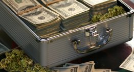 Cannabis and the U.S. Banking Sector