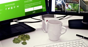 The Wild And Wacky World Of Weed Journalism