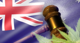 Top Cops and Prosecutors Call to End the War on Drugs – Is Australia Stepping Up to Decriminalise Drugs?