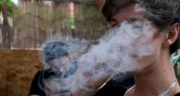 Cannabis Legalization Does Decrease Teenage Cannabis Use