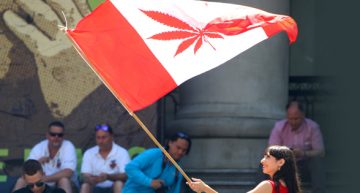 Canada's New Weed Laws & the Impact on the Other Sovereign Countries