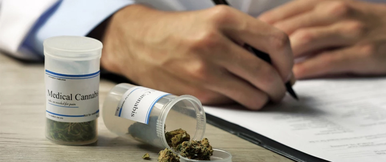 Germany's law does not limit conditions that a doctor can prescribe cannabis for.