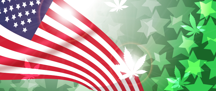 American marijuana law reform movement