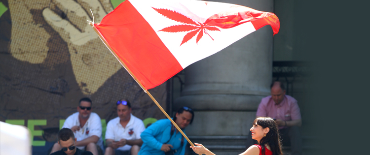 420 day in Canada Canada's New Weed Laws