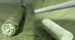 Joints vs. Blunts vs. Spliffs: What's Best For You?