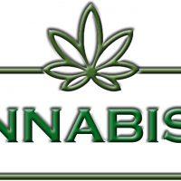 Cannabismo
