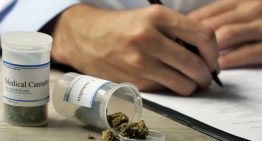 Doctors Approve Cancer Patients Asking for Medical Cannabis