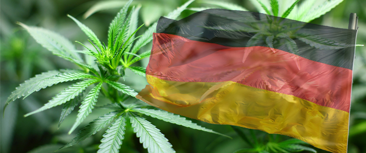 Cannabis law reform in Germany