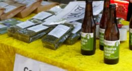 Gruthaus Brauerei:  We Will Sell No Craft Hemp Beer Before Its Time