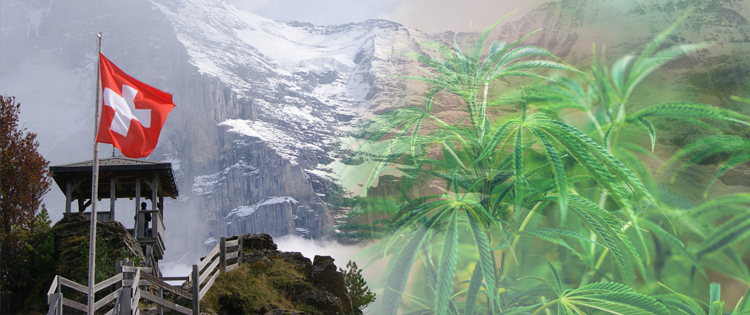 Swiss Cannabis Reform Moves Forward – Can Switzerland Become the 'Colorado of Europe'?