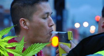 New Weed Breathalyzer Picks Up Even Edible Cannabis