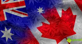 Canada Legalizes Cannabis Use for All Adults while Australia Still Prosecutes Patients