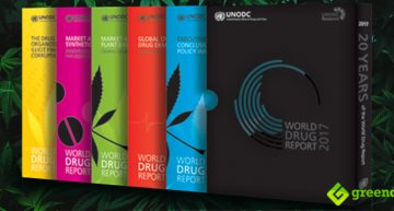 5 Learnings About Cannabis from The United Nations World Drug Report 2017