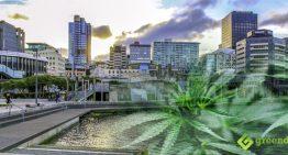 Tall Poppy Syndrome Smokes Kiwi Pot Celebrities