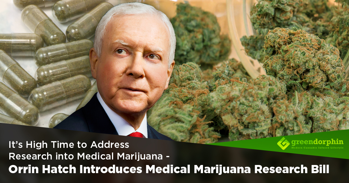 an introduction to medical marijuana What is medical marijuana medical marijuana is any part of the marijuana plant that you use to treat health problems people use it.