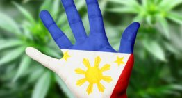 JR's Marijuana Story: It's Not More Fun in the Philippines Anymore