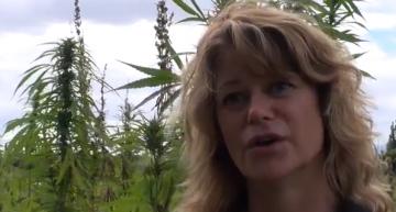 Greendorphin World News Episode #5 – New Zealand Cannabis News Featuring Anne Jordan
