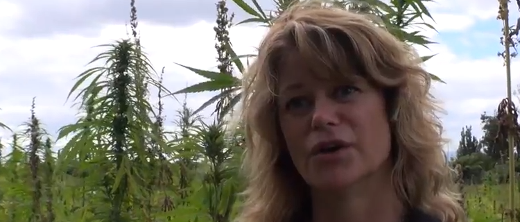 Greendorphin World News Episode #5 – New Zealand Cannabis News Featuring Anne Jordan