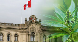 Peruvian Congress Votes to Legalize Medical Cannabis in Peru