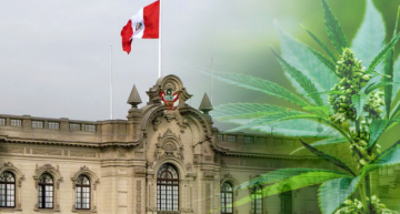 Peru Passes Bill to Legalize Medical Cannabis