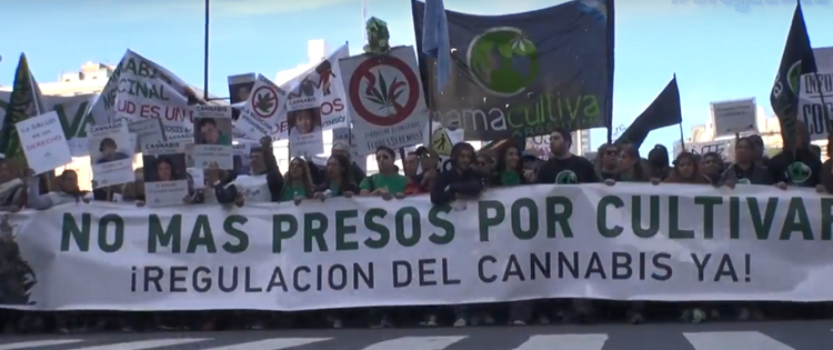 Argentina Cannabis Protest