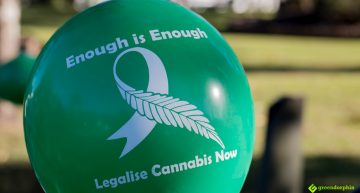 4 Ways You Can Help Legalize Cannabis