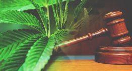 Federal Judge Recognizes Medical Properties Of Marijuana in Lawsuit Against DEA