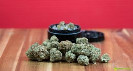 Top 10: Ways to Consume Your Cannabis