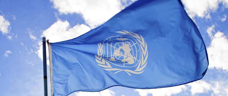 UN Drug Committee: Cannabis is a 'Relatively Safe Drug'