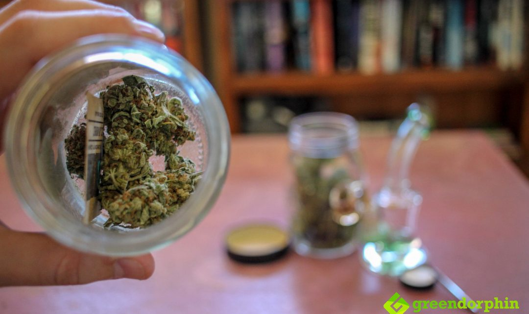 The Top 5 Ways to Store Your Cannabis: Best Weed Stash Spots!