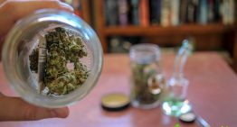 5 Ways to Store Your Cannabis: Best Weed Stash Spots!