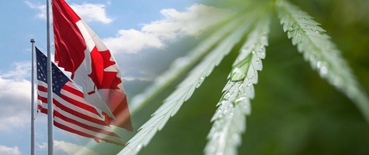 Cost of Cannabis in USA vs Canada
