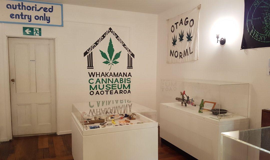 Dunedin Cannabis Museum Sets a High Standard