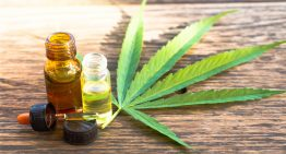 Health Benefits of Cannabis and Black Seed Oil