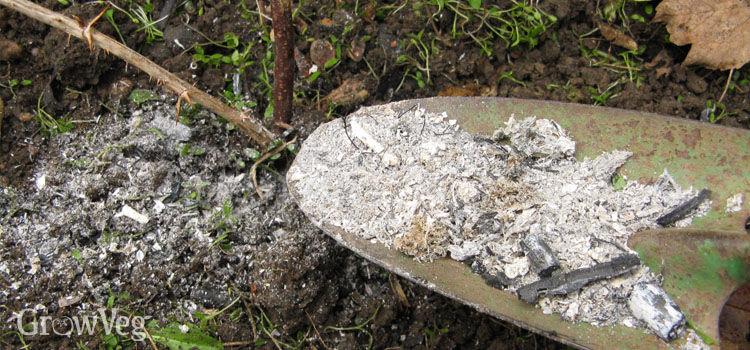 Grow organic weed pot ash