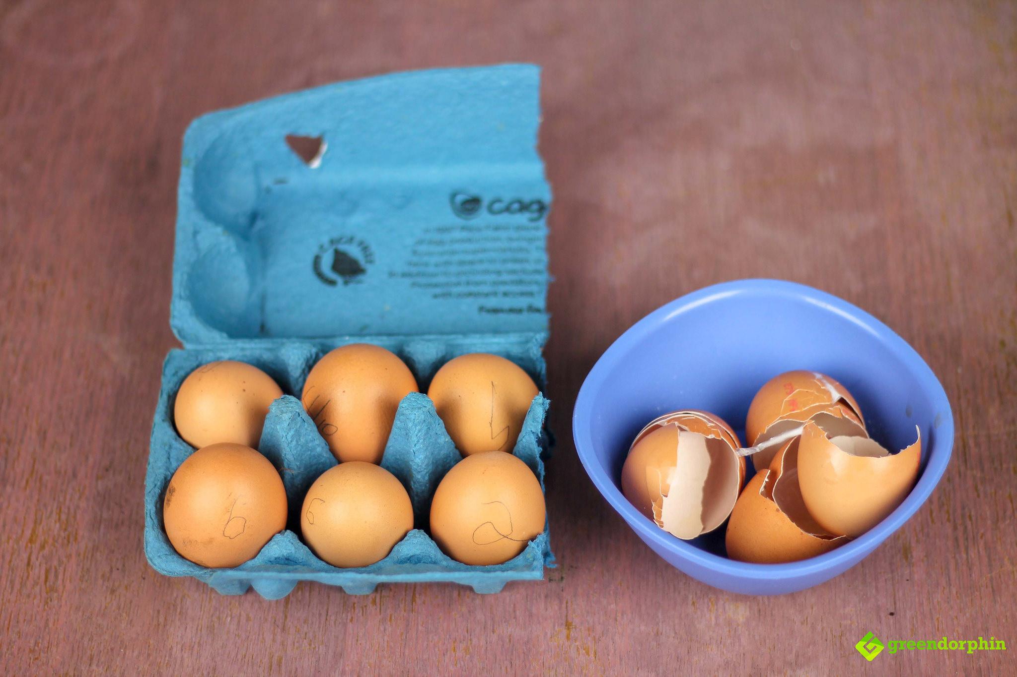 Grow organic weed egg shells