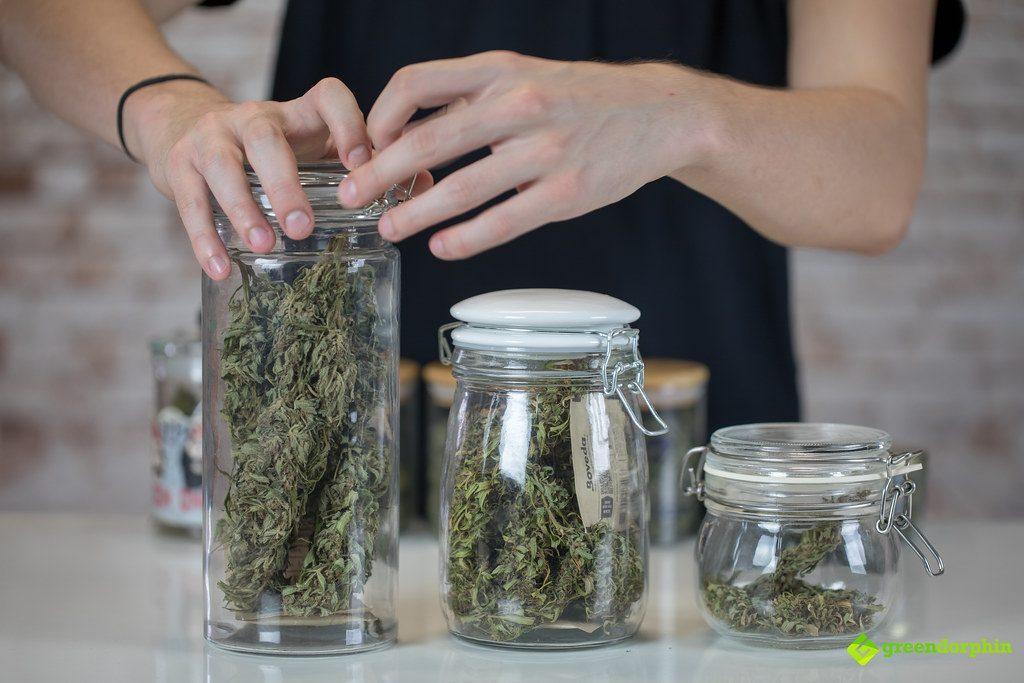 buy cannabis in dispensaries