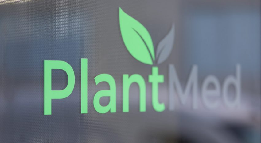 A Visit to PlantMed, a Cannabis Clinic in Brisbane Australia